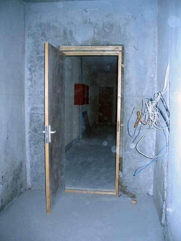 изготовим металлическую дверь в коридор
